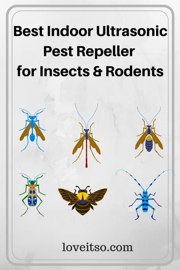 Best Indoor Ultrasonic Pest Repeller for Insects and Rodents